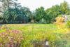 Einfamilienhaus ca. 145m² 5 Zimmer auf ca. 814m² Grundstück in 23749 Grube - Garten
